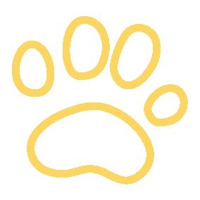 Zeocel Italia gli specialisti della zeolite - pets